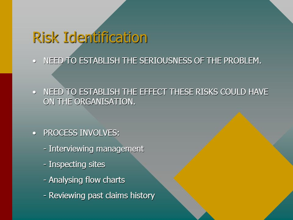 Risk Identification NEED TO ESTABLISH THE SERIOUSNESS OF THE PROBLEM.