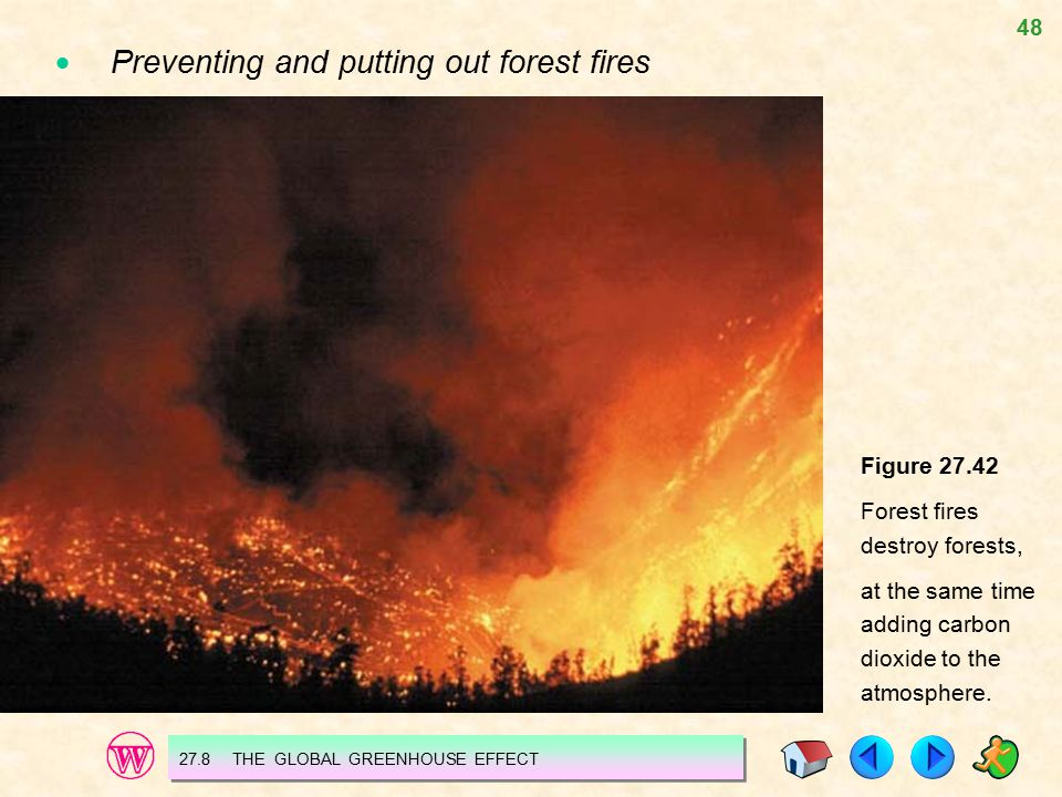  Preventing and putting out forest fires