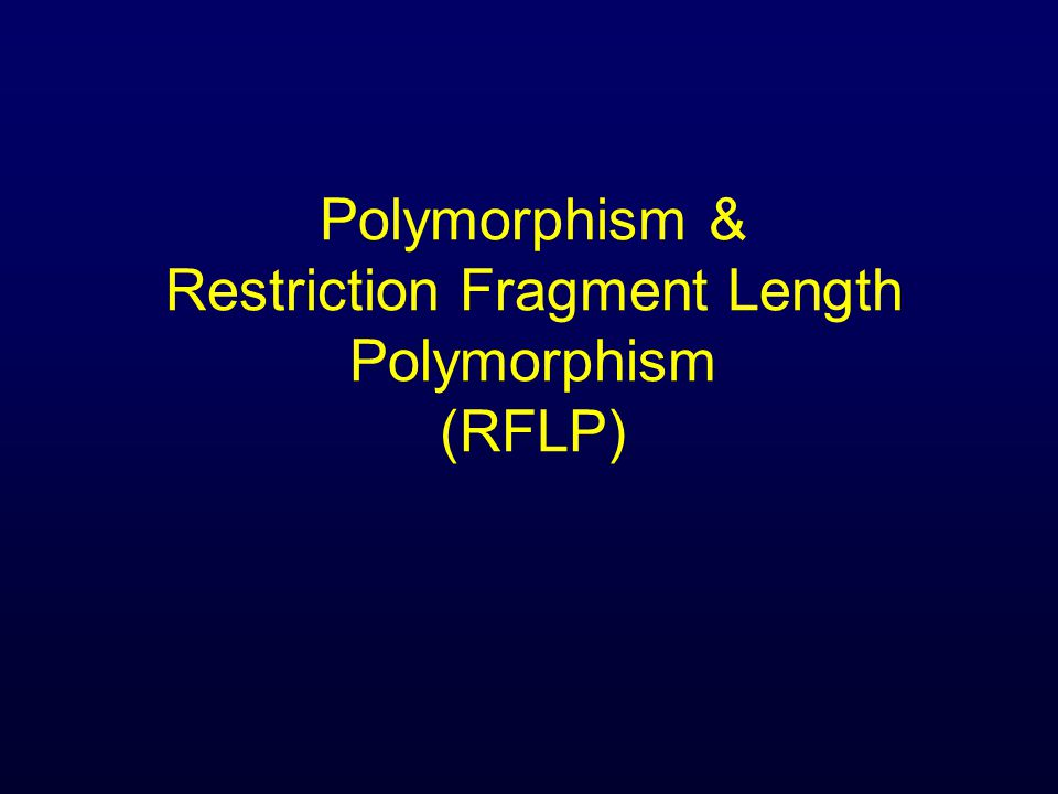 Polymorphism & Restriction Fragment Length Polymorphism (RFLP)