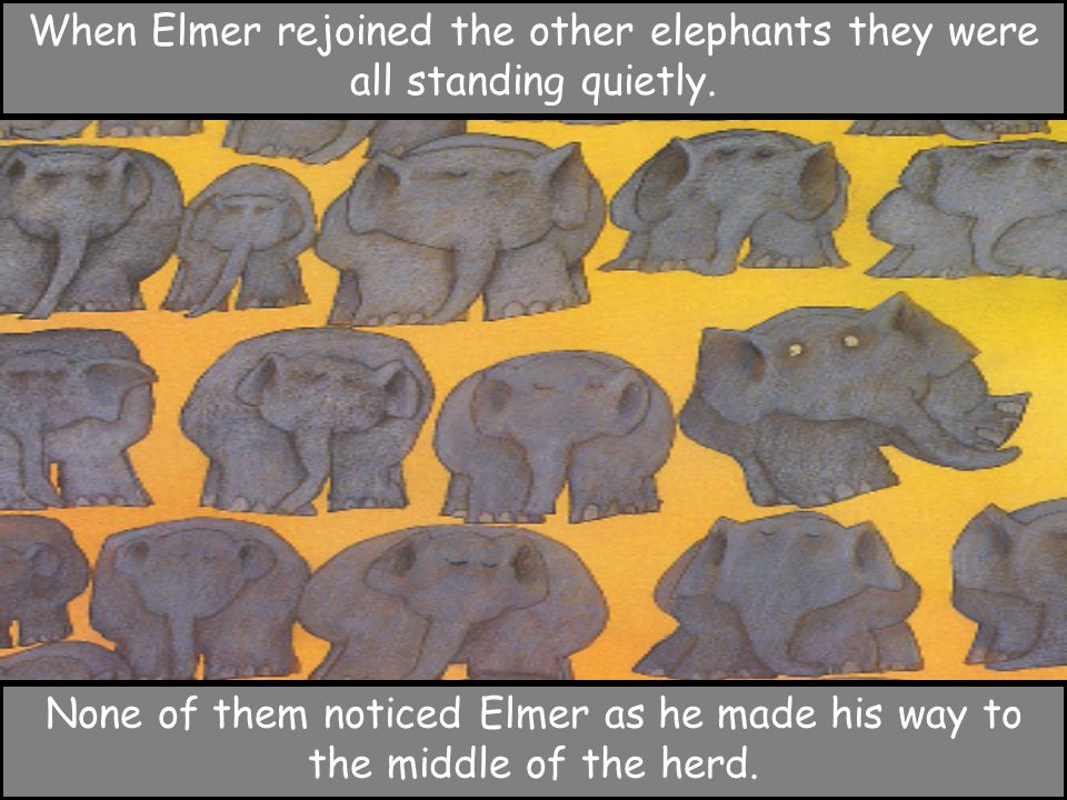 When Elmer rejoined the other elephants they were all standing quietly.