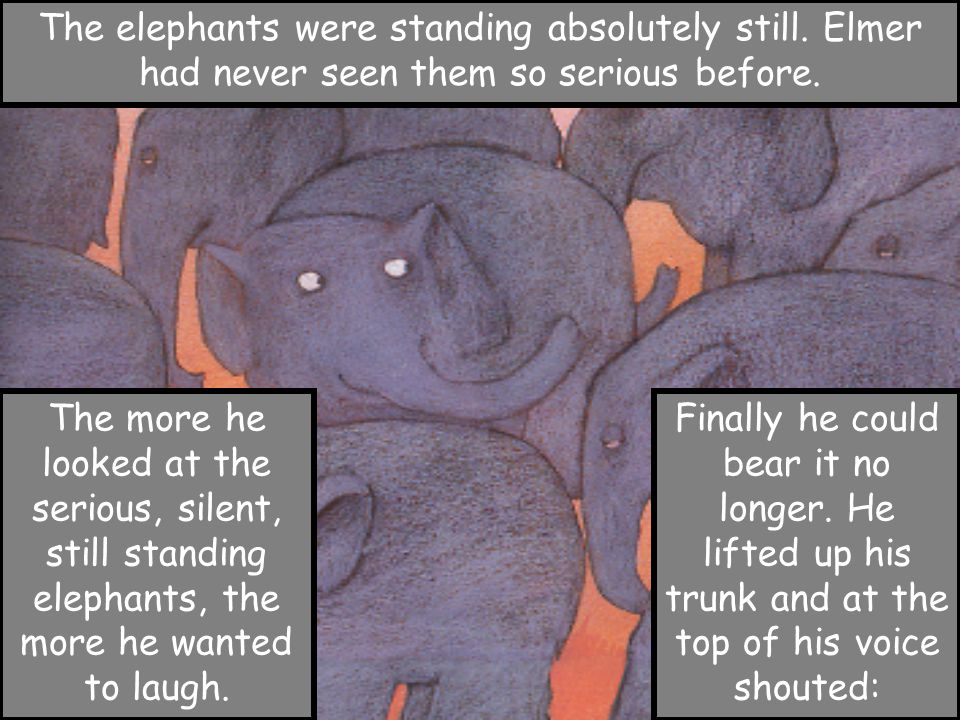 The elephants were standing absolutely still