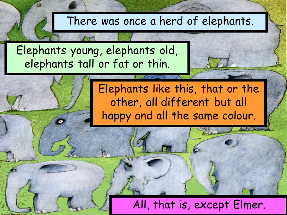 There was once a herd of elephants.