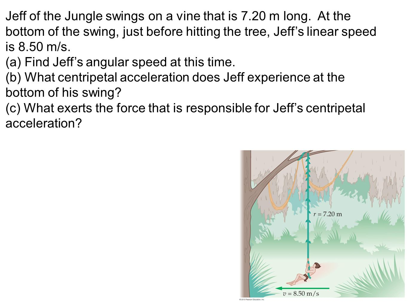 Jeff of the Jungle swings on a vine that is 7. 20 m long