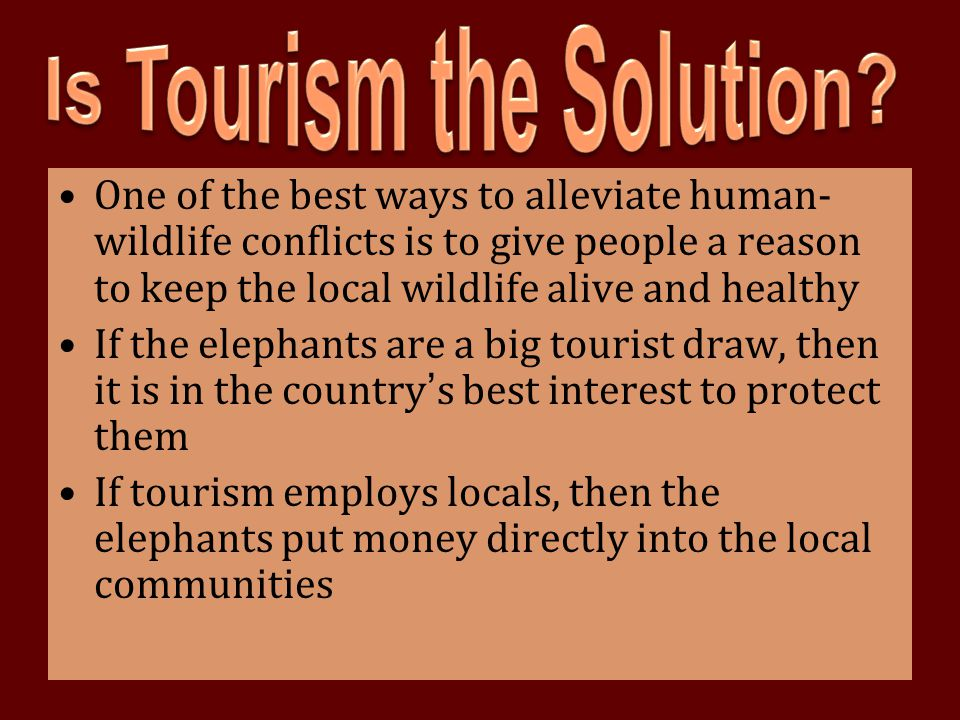 Is Tourism the Solution