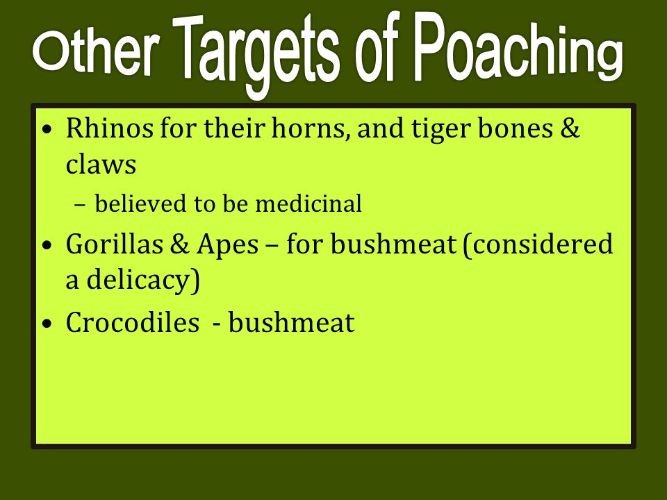Other Targets of Poaching