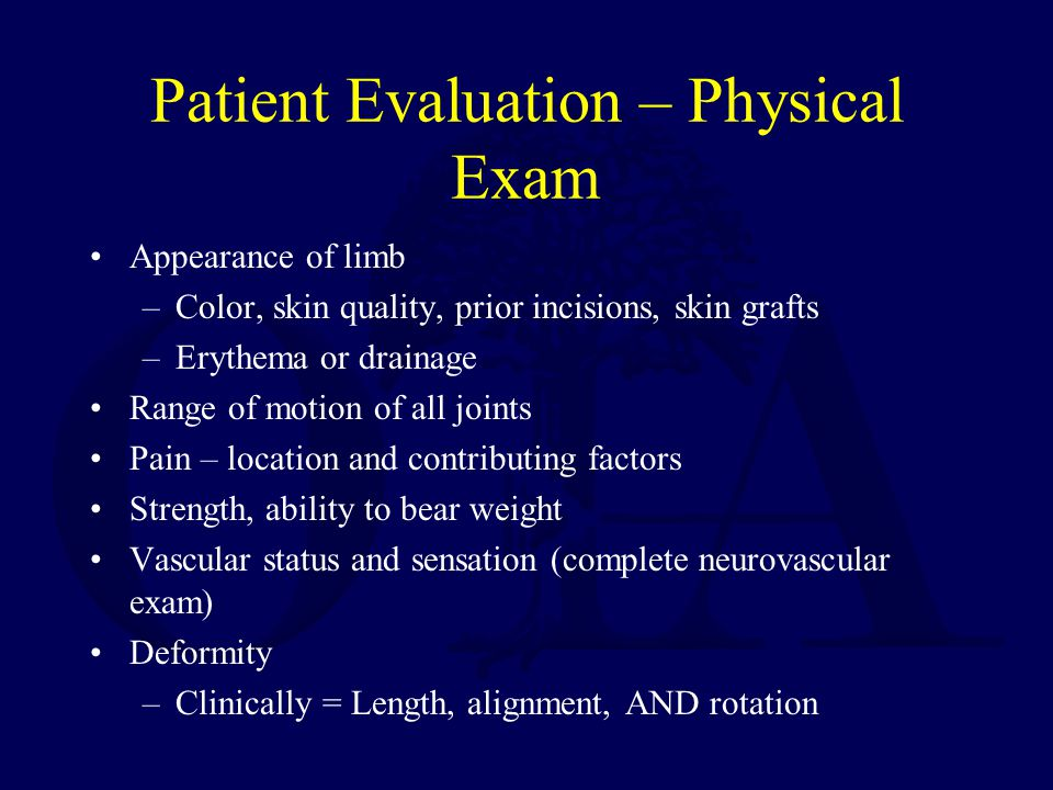Patient Evaluation – Physical Exam