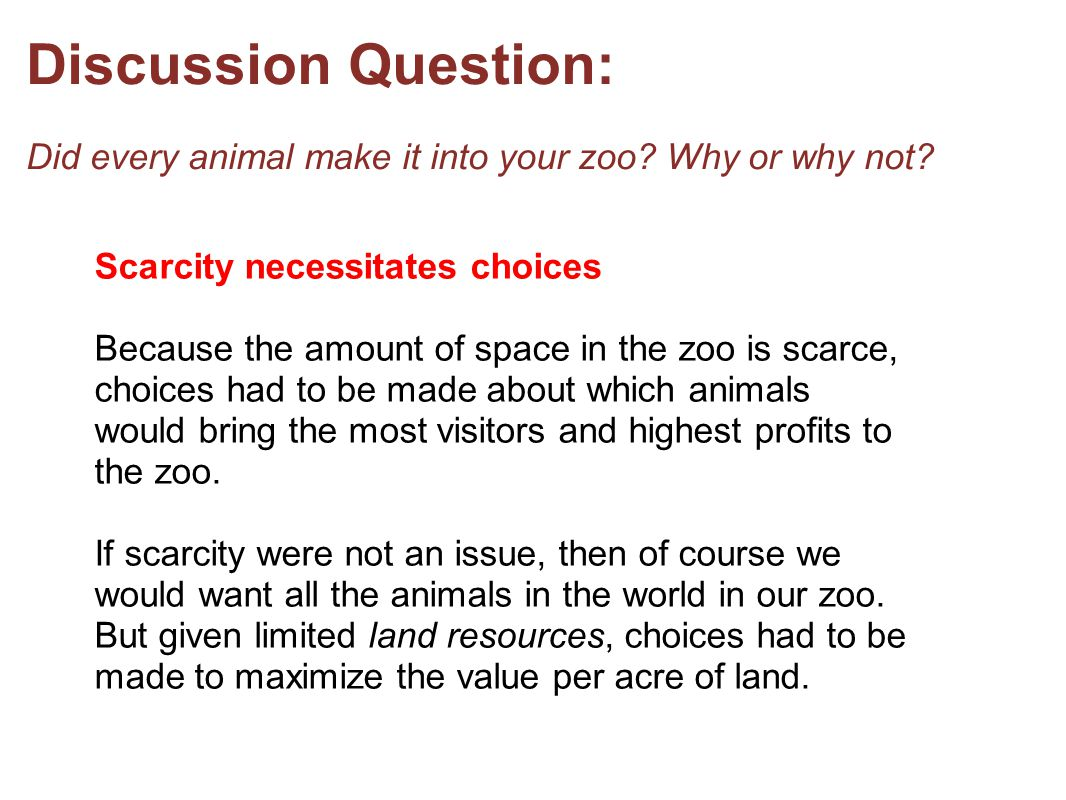 Discussion Question: Did every animal make it into your zoo