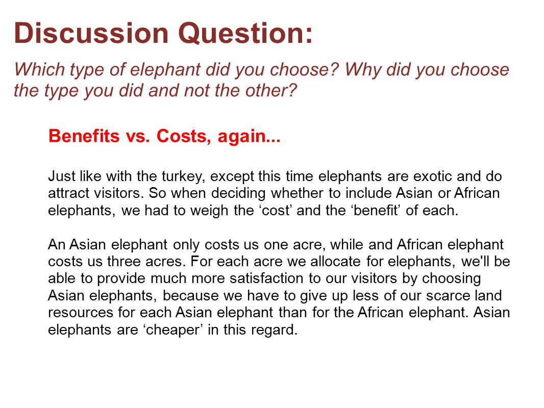 Discussion Question: Which type of elephant did you choose