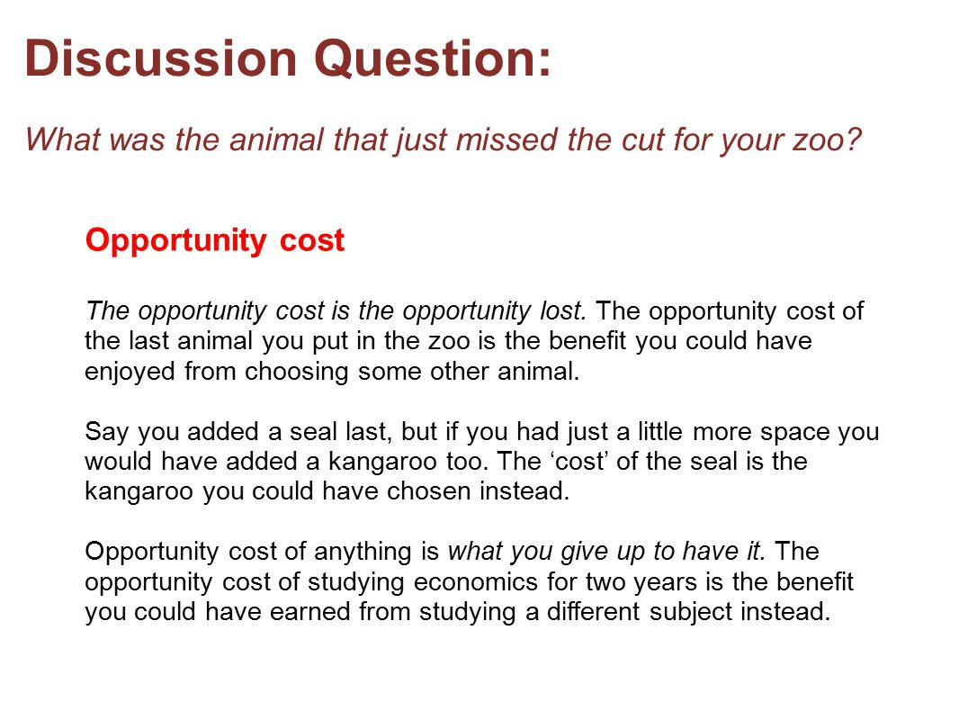 Discussion Question: What was the animal that just missed the cut for your zoo
