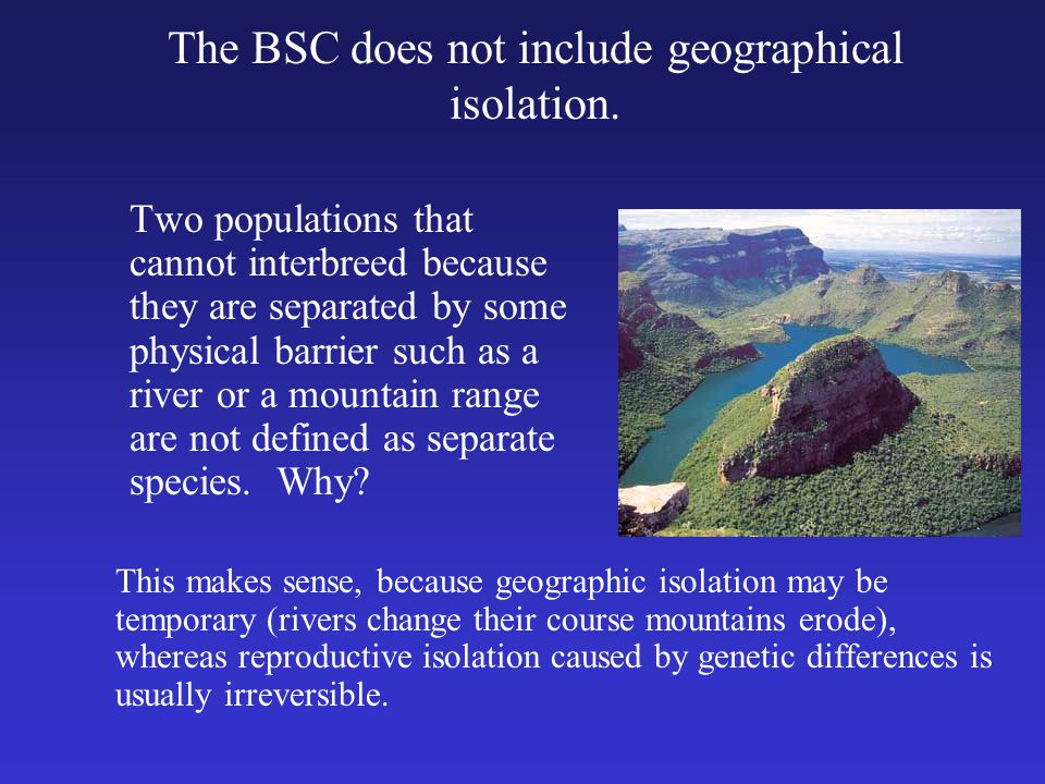 The BSC does not include geographical isolation.