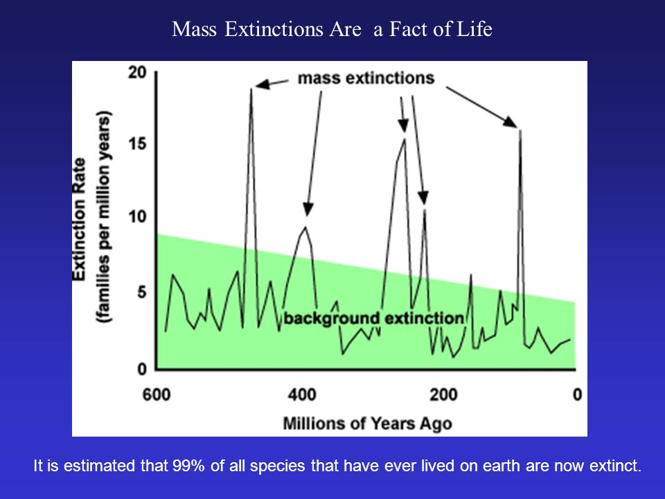 Mass Extinctions Are a Fact of Life