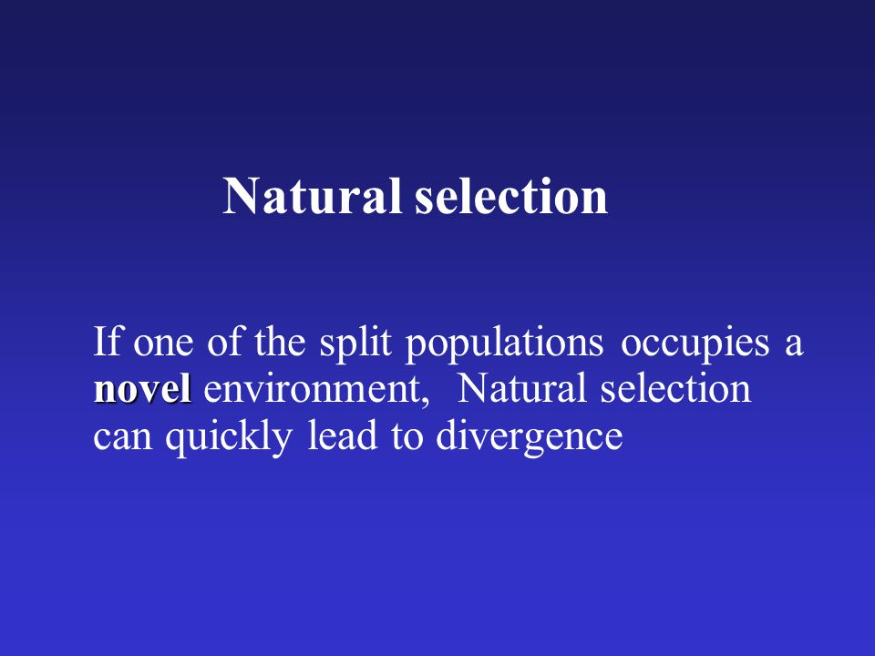 Natural selection If one of the split populations occupies a novel environment, Natural selection can quickly lead to divergence.