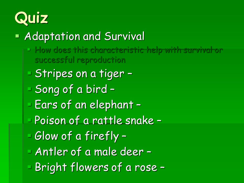 Quiz Adaptation and Survival Stripes on a tiger – Song of a bird –