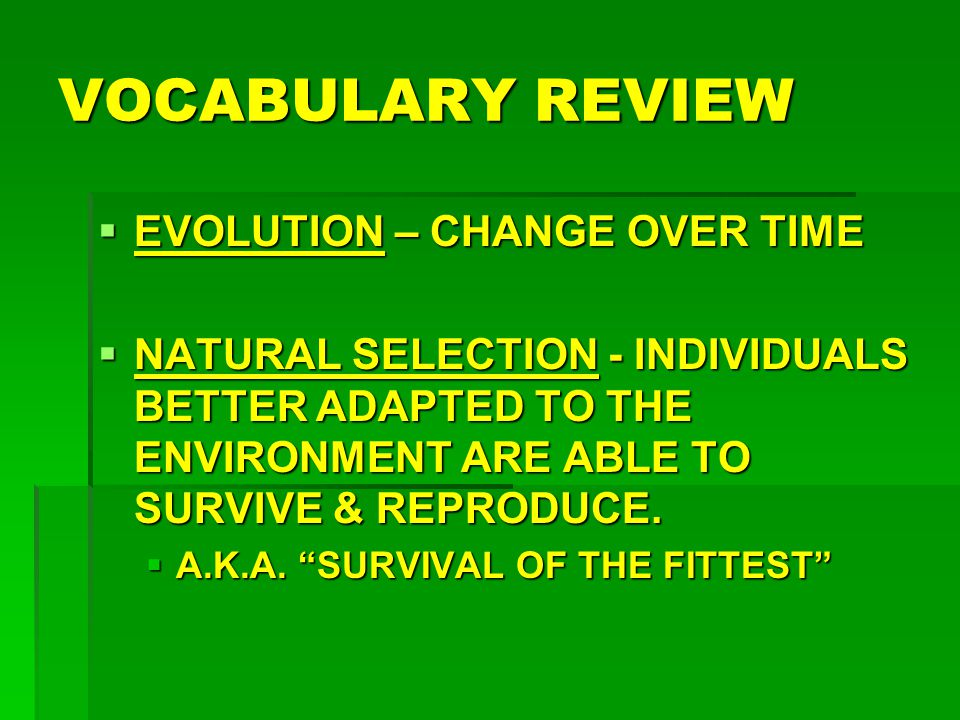 VOCABULARY REVIEW EVOLUTION – CHANGE OVER TIME