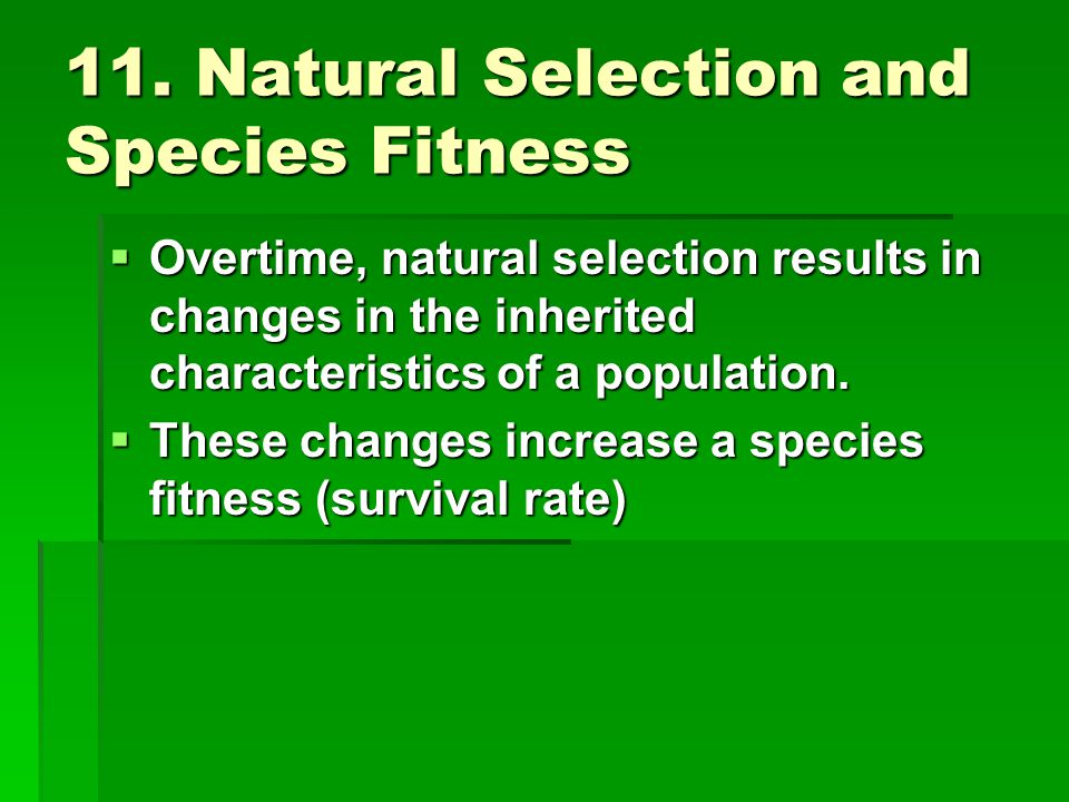 11. Natural Selection and Species Fitness