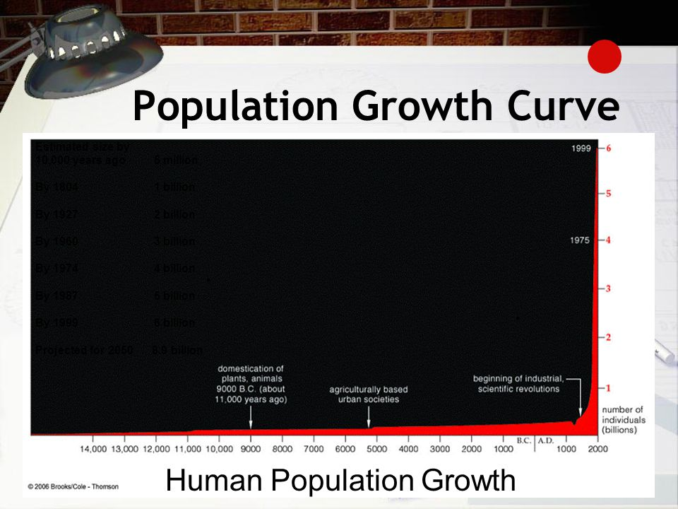 Population Growth Curve
