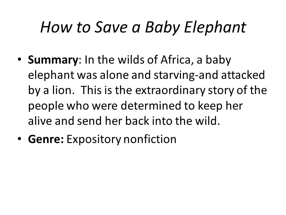 How to Save a Baby Elephant