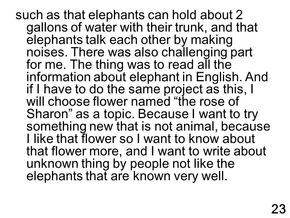 such as that elephants can hold about 2 gallons of water with their trunk, and that elephants talk each other by making noises. There was also challenging part for me. The thing was to read all the information about elephant in English. And if I have to do the same project as this, I will choose flower named the rose of Sharon as a topic. Because I want to try something new that is not animal, because I like that flower so I want to know about that flower more, and I want to write about unknown thing by people not like the elephants that are known very well.