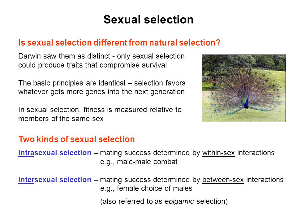 Sexual selection Is sexual selection different from natural selection
