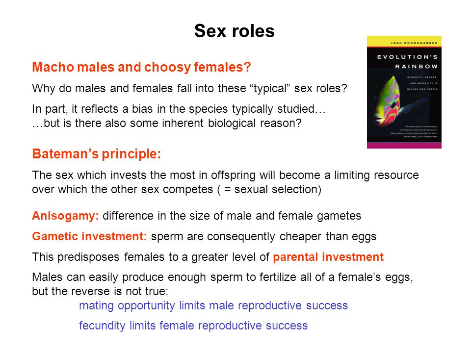 Sex roles Macho males and choosy females Bateman's principle: