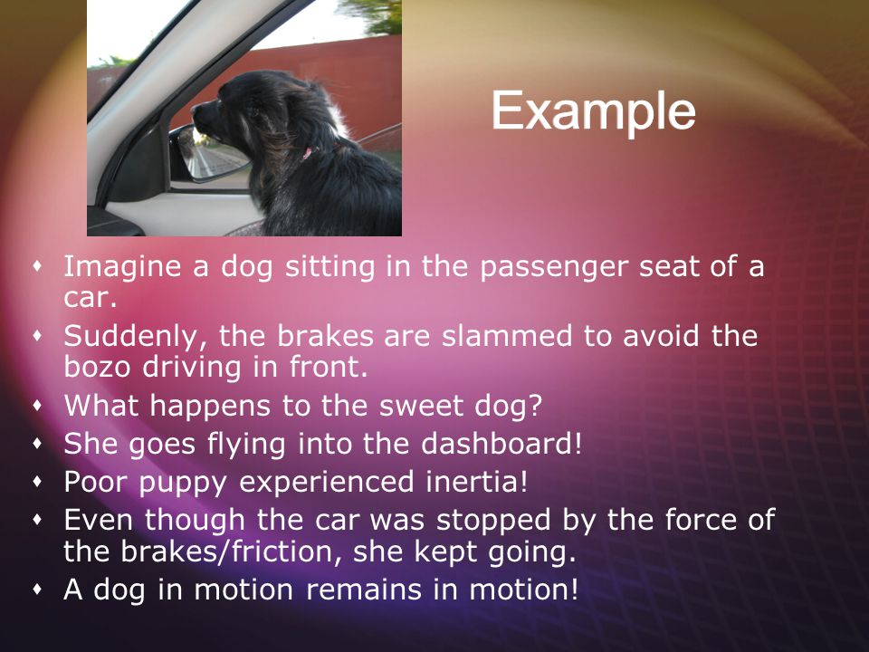 Example Imagine a dog sitting in the passenger seat of a car.