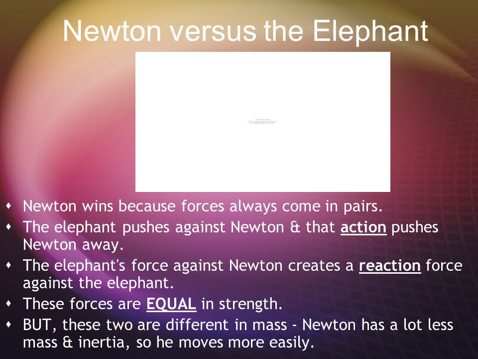 Newton versus the Elephant