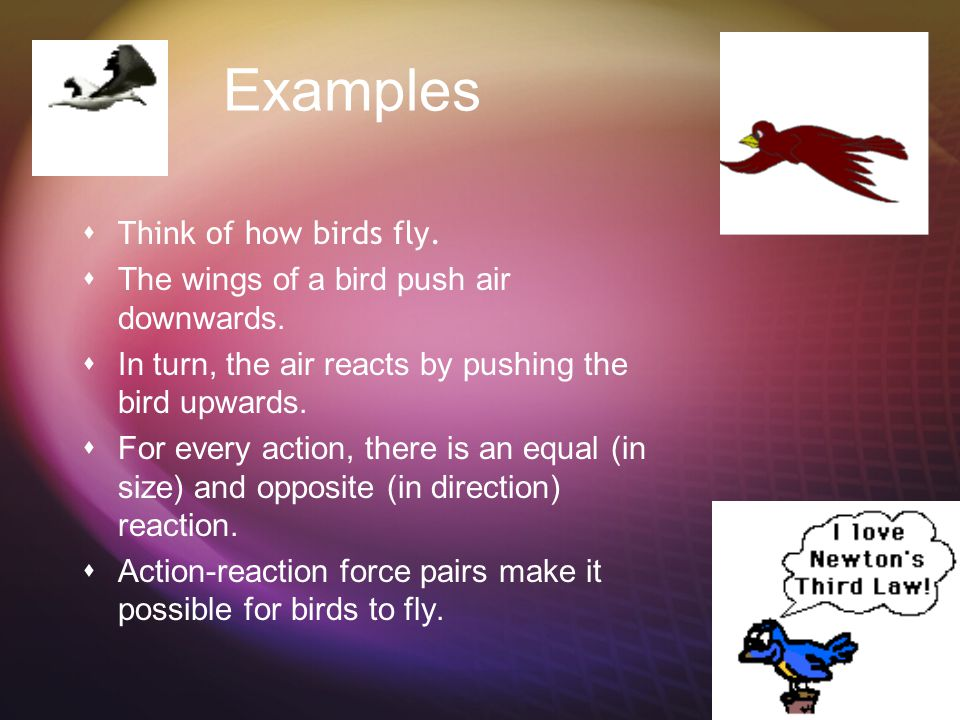 Examples Think of how birds fly.