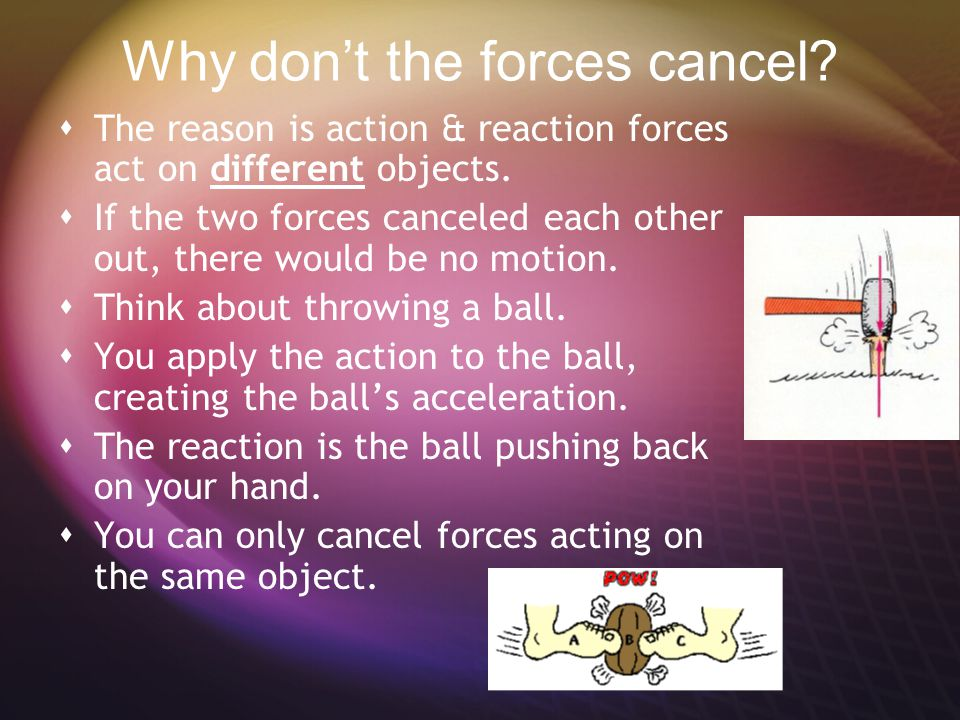 Why don't the forces cancel