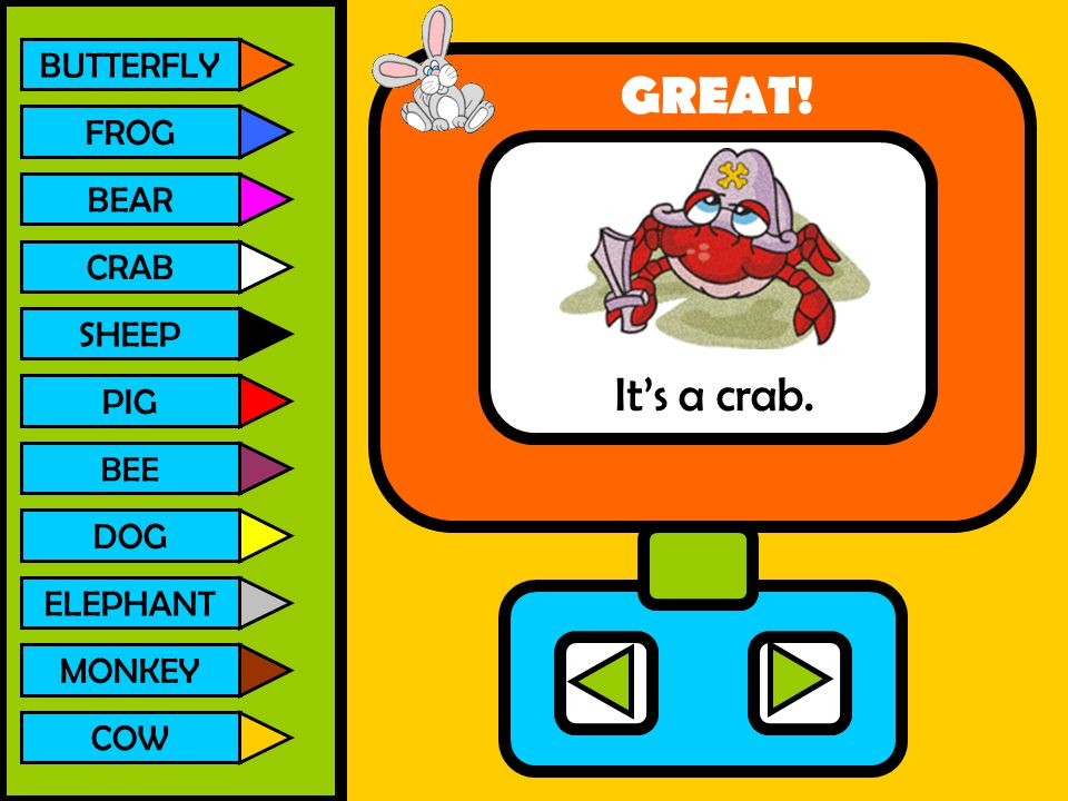 GREAT! It's a crab. BUTTERFLY FROG BEAR CRAB SHEEP PIG DOG ELEPHANT