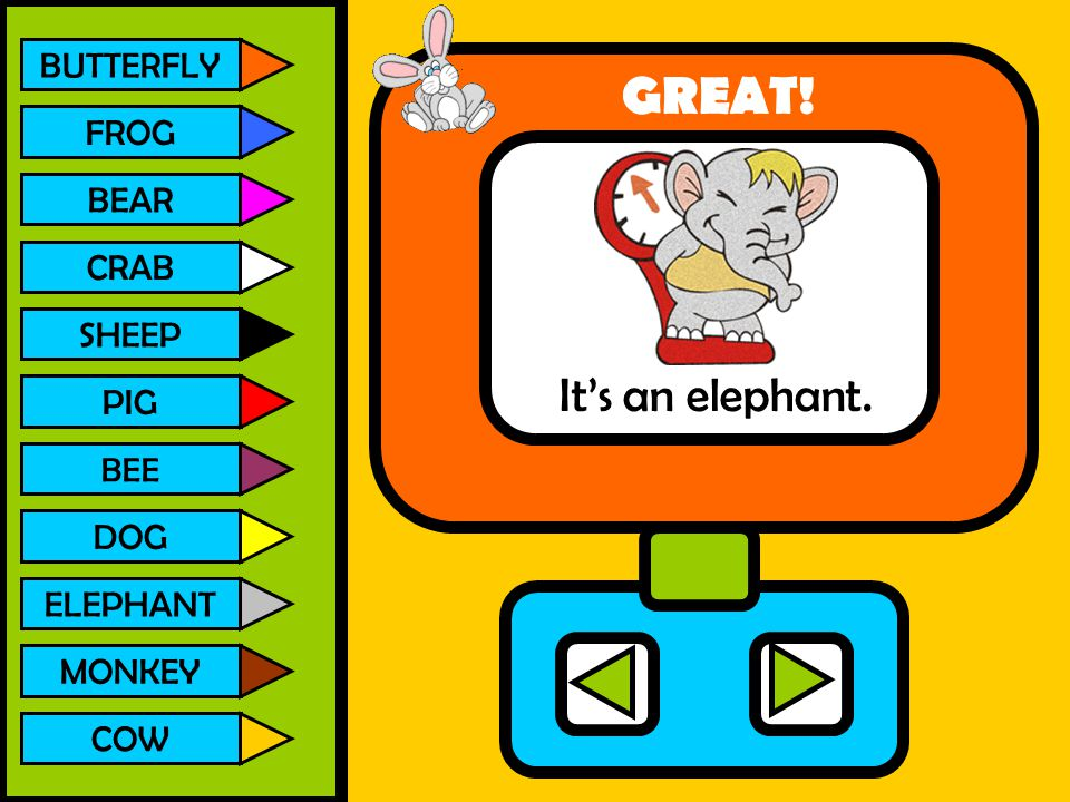 GREAT! It's an elephant. BUTTERFLY FROG BEAR CRAB SHEEP PIG DOG