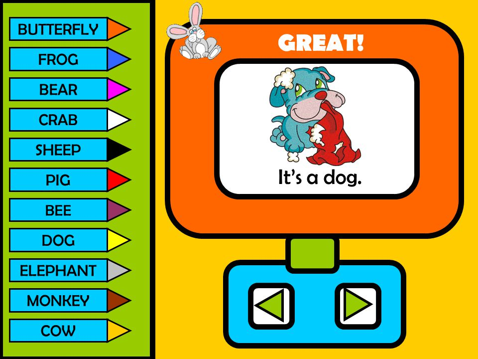 GREAT! It's a dog. BUTTERFLY FROG BEAR CRAB SHEEP PIG DOG ELEPHANT