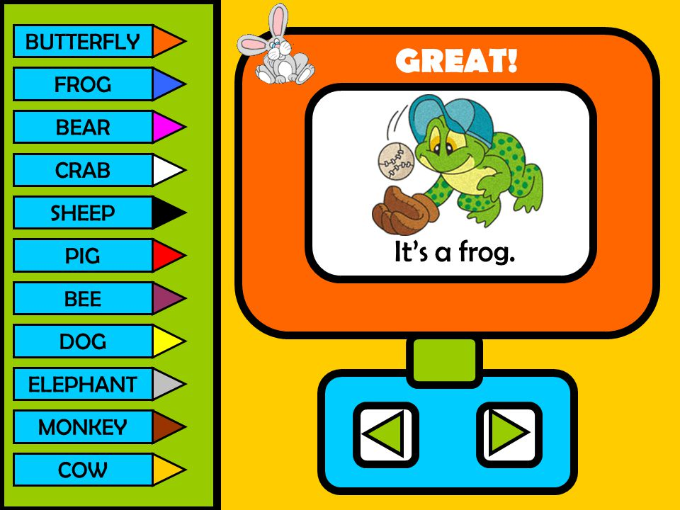 GREAT! It's a frog. BUTTERFLY FROG BEAR CRAB SHEEP PIG DOG ELEPHANT