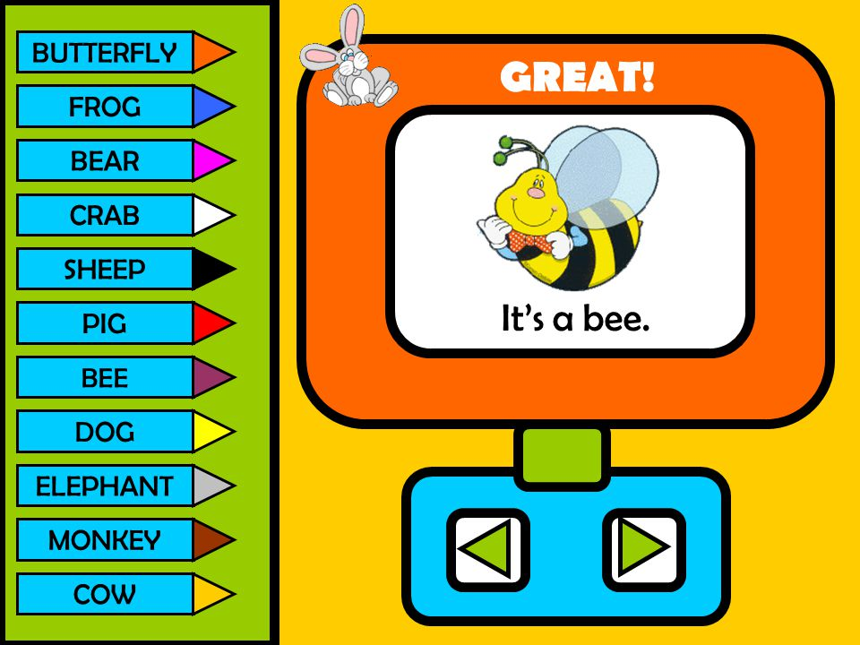 GREAT! It's a bee. BUTTERFLY FROG BEAR CRAB SHEEP PIG DOG ELEPHANT