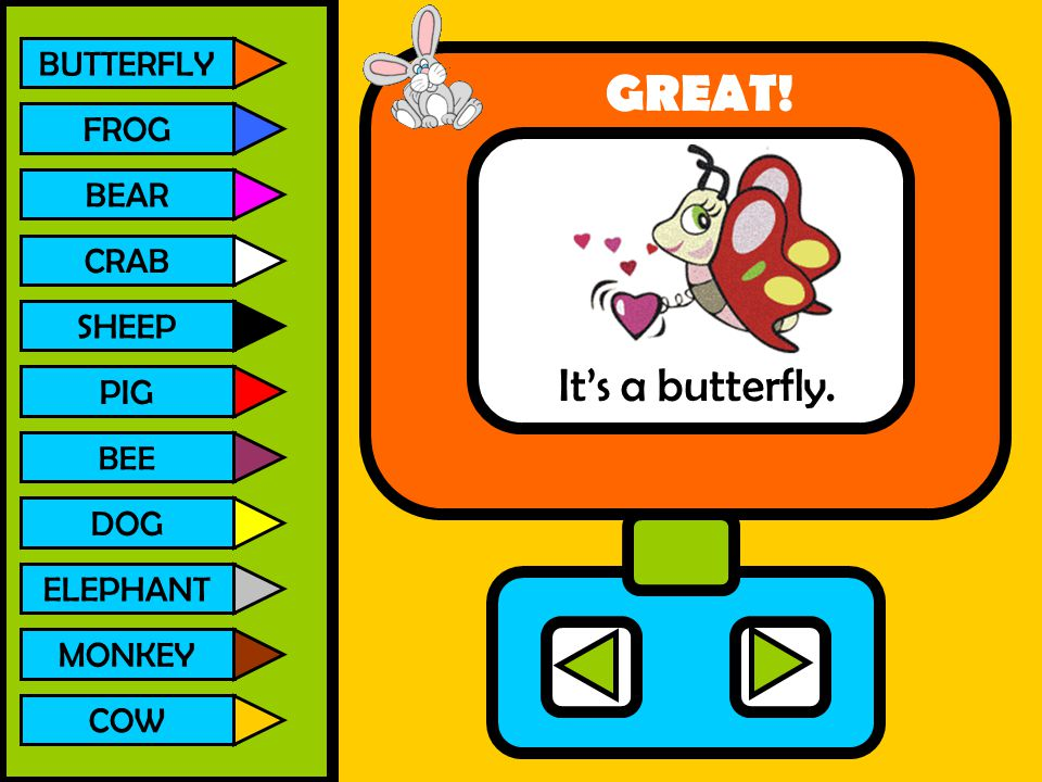 GREAT! It's a butterfly. BUTTERFLY FROG BEAR CRAB SHEEP PIG DOG