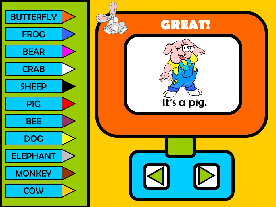 GREAT! It's a pig. BUTTERFLY FROG BEAR CRAB SHEEP PIG DOG ELEPHANT