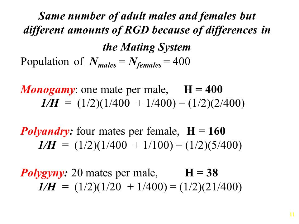 Same number of adult males and females but different amounts of RGD because of differences in the Mating System