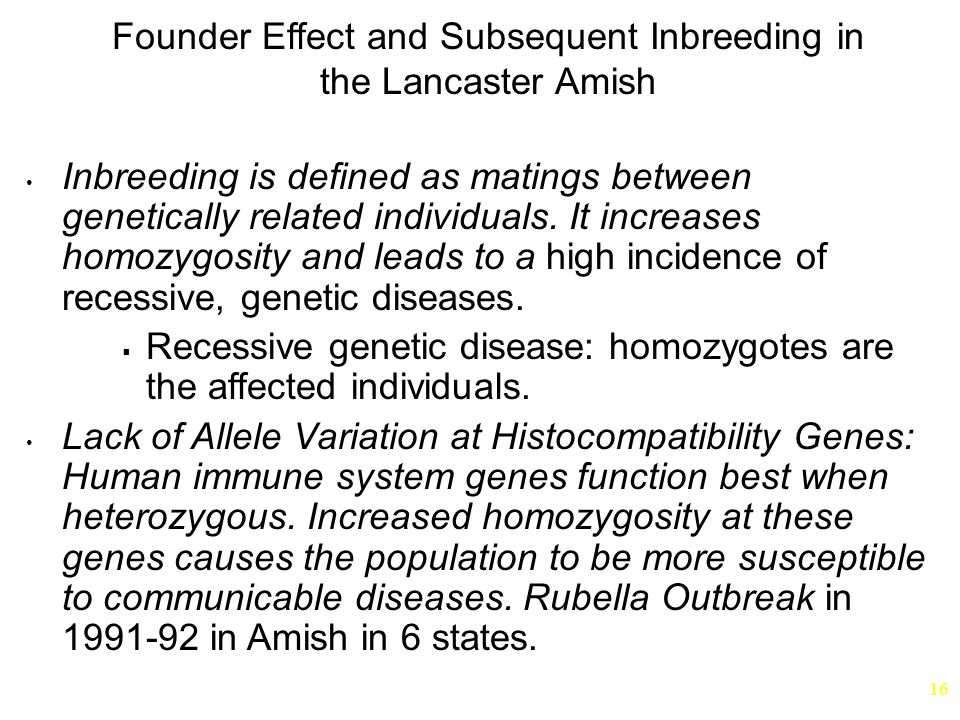 Founder Effect and Subsequent Inbreeding in the Lancaster Amish