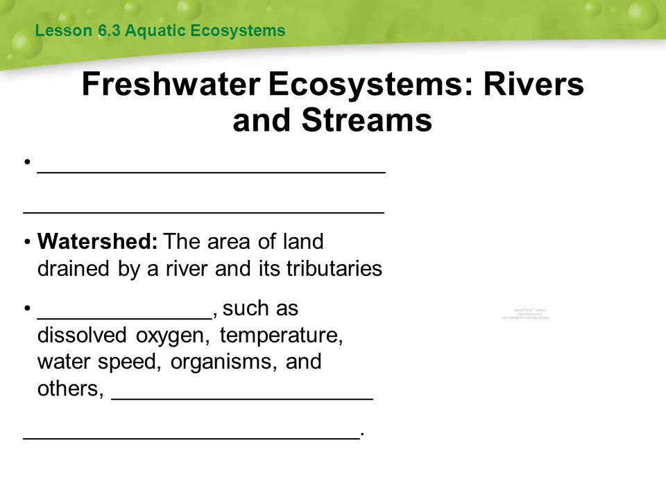 Freshwater Ecosystems: Rivers and Streams