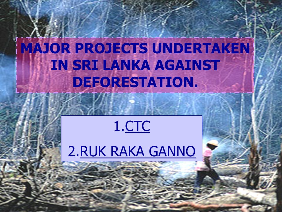 MAJOR PROJECTS UNDERTAKEN IN SRI LANKA AGAINST DEFORESTATION.