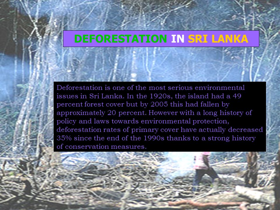 DEFORESTATION IN SRI LANKA