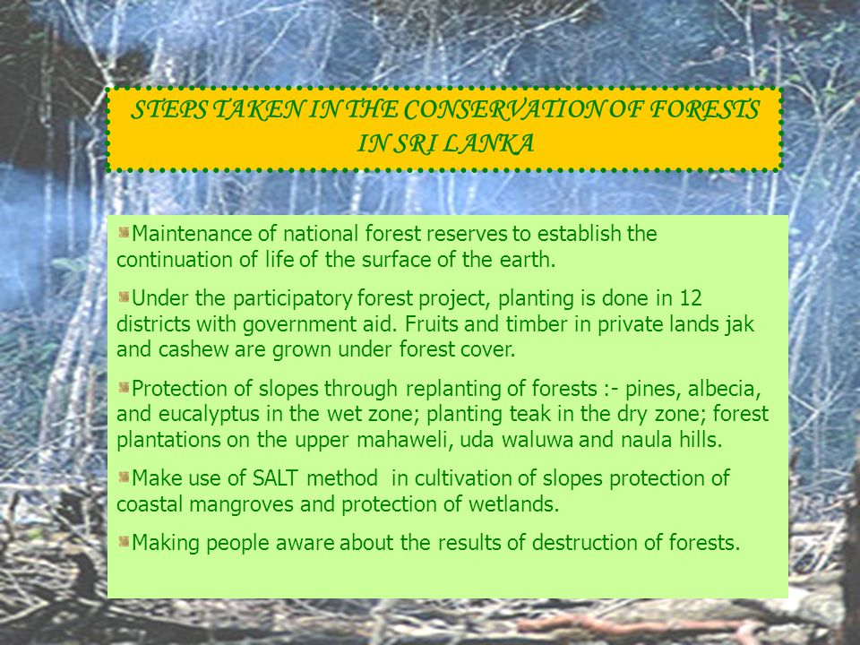 STEPS TAKEN IN THE CONSERVATION OF FORESTS IN SRI LANKA