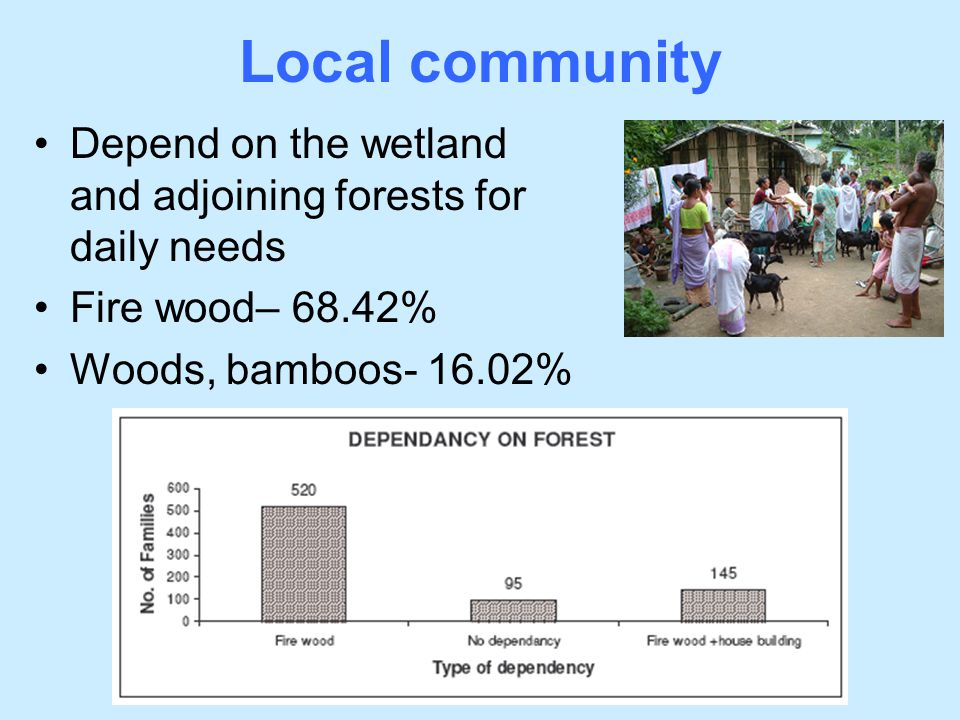 Local community Depend on the wetland and adjoining forests for daily needs.