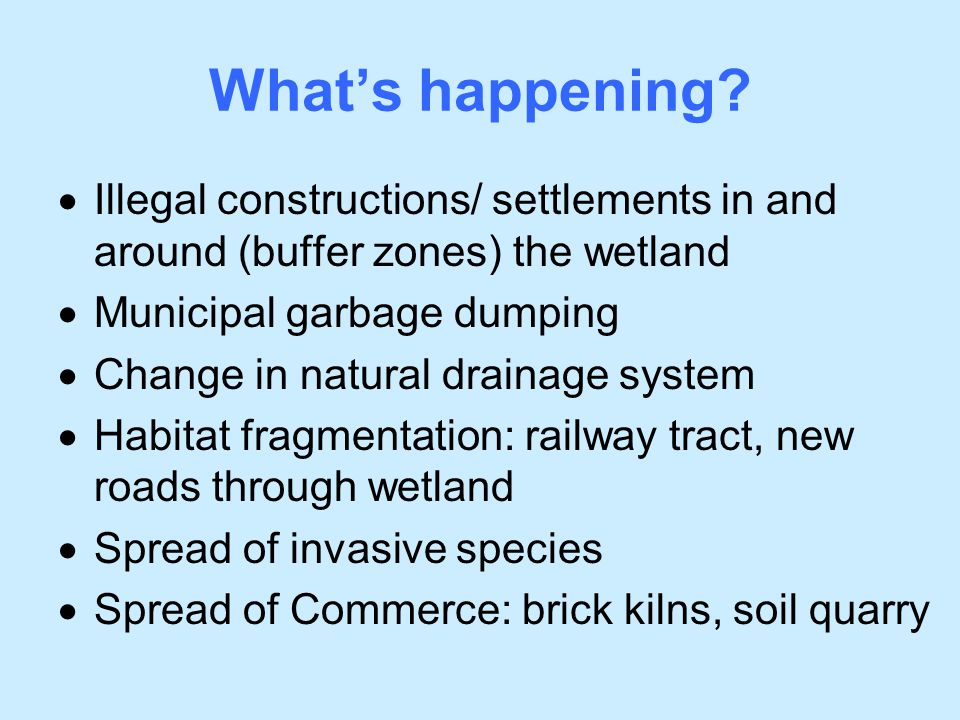 What's happening Illegal constructions/ settlements in and around (buffer zones) the wetland. Municipal garbage dumping.