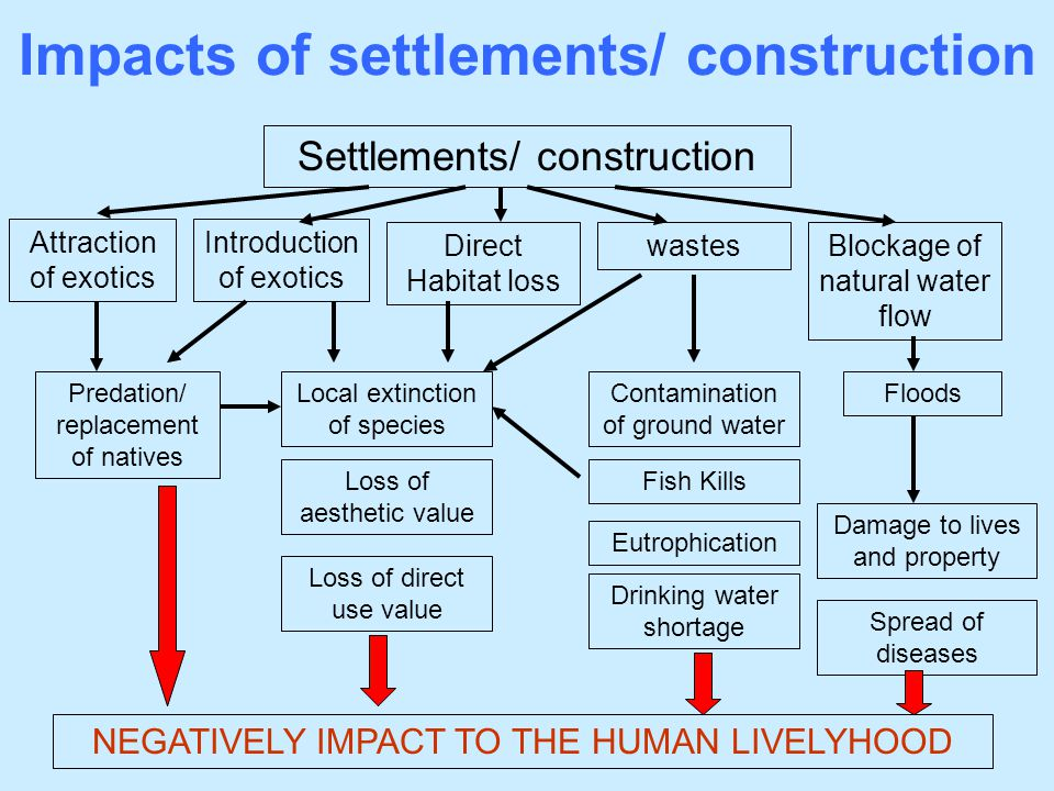 Impacts of settlements/ construction
