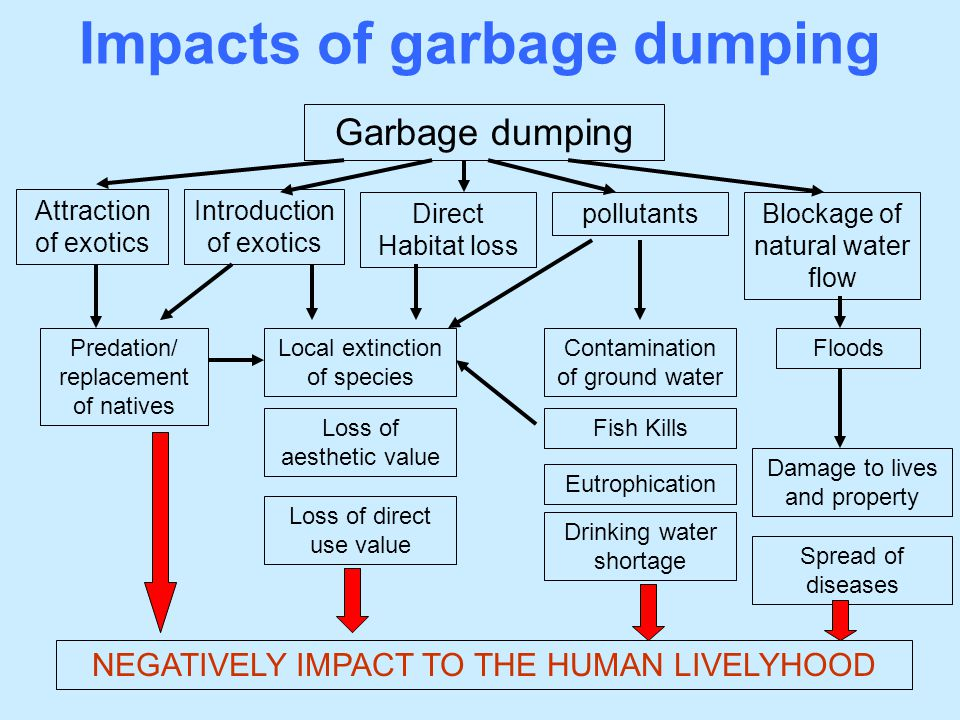 Impacts of garbage dumping