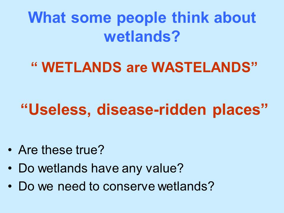 What some people think about wetlands