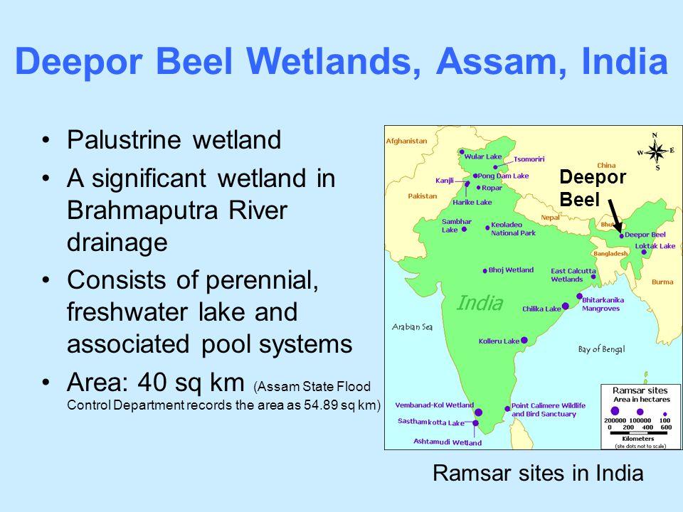 Deepor Beel Wetlands, Assam, India