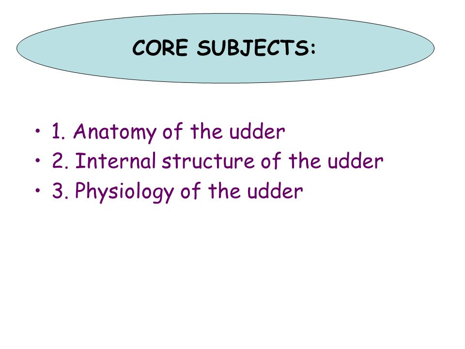 CORE SUBJECTS: 1. Anatomy of the udder. 2. Internal structure of the udder.