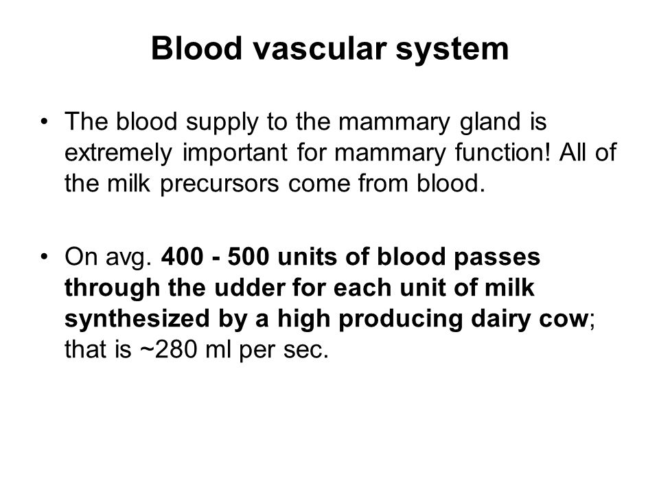 Blood vascular system The blood supply to the mammary gland is extremely important for mammary function! All of the milk precursors come from blood.