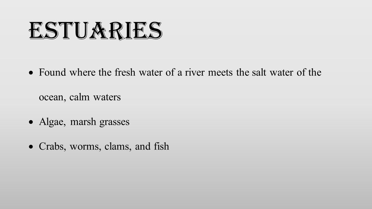 Estuaries Found where the fresh water of a river meets the salt water of the ocean, calm waters. Algae, marsh grasses.